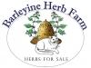 Barleywine Herb Farm